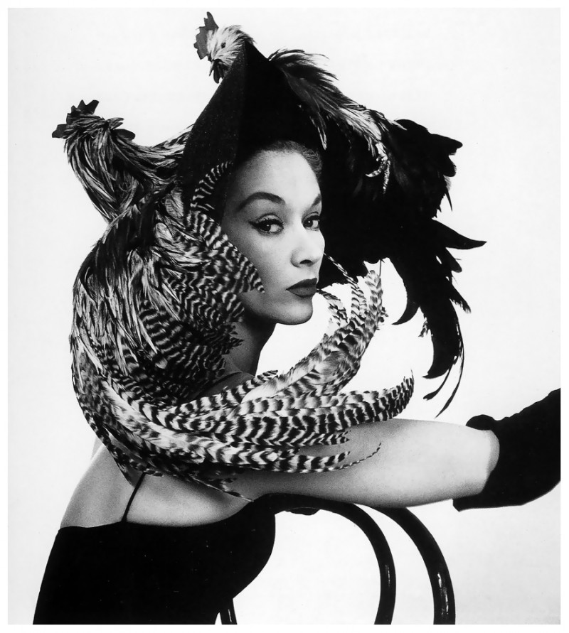 068-woman-in-chicken-hat22-lisa-fonssagrives-photo-by-irving-penn-1948-49-the-red-list