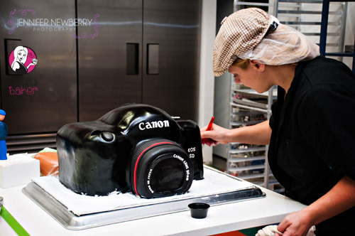 Ant-working-on-camera-cake